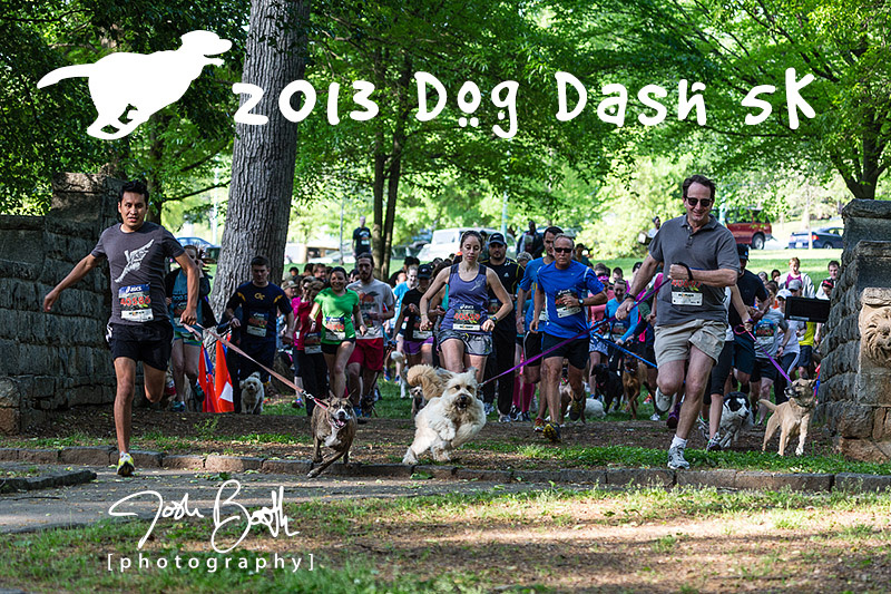 Atlanta Dog Photographer Josh Booth Photography Dog Dash 5K